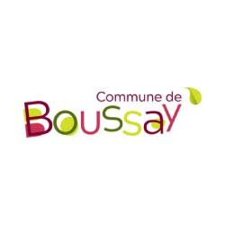 commune-de-boussay-logo
